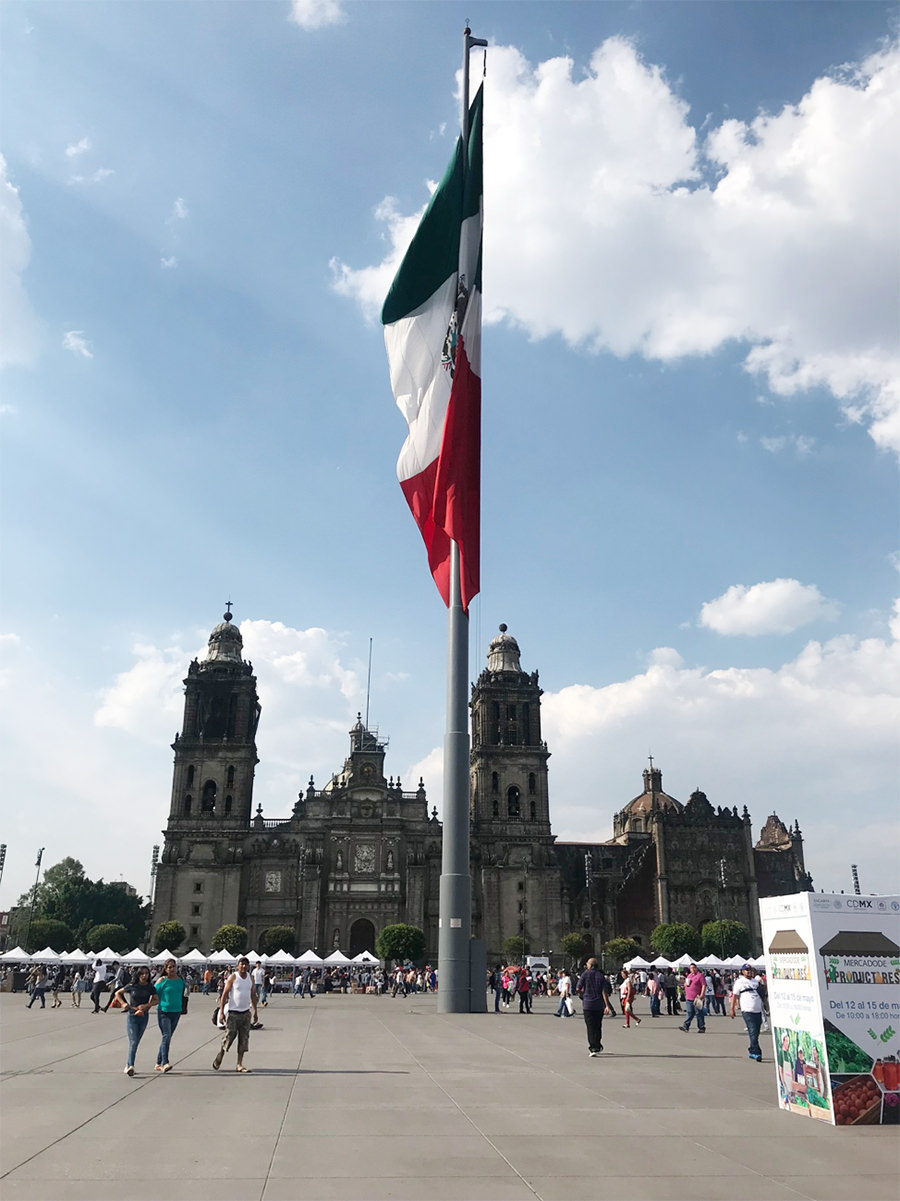 Mexico flag - Learn Spanish
