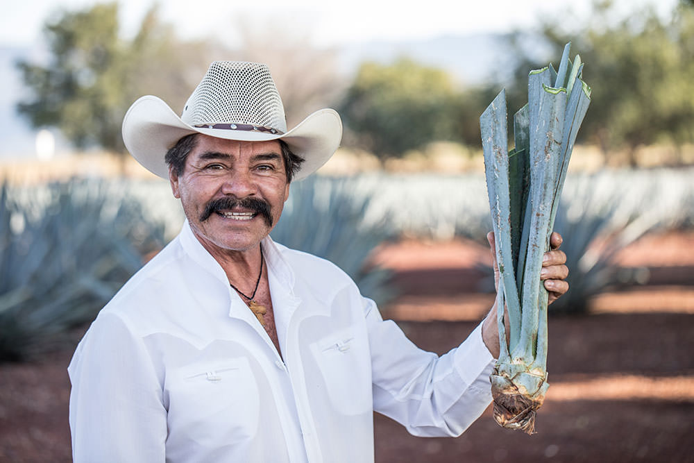 Agave Farmer | Speak Spanish with Rosetta Stone