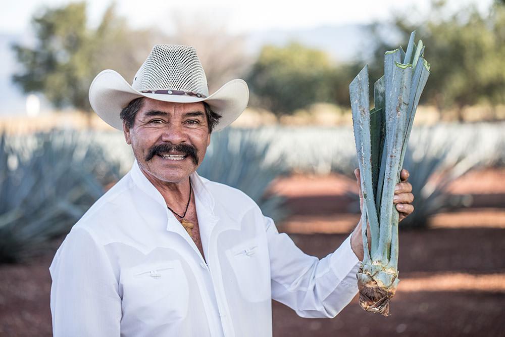 Agave Farmer | Speak Spanish with Rosetta Stone