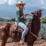 A Spanish Journey through Latin America